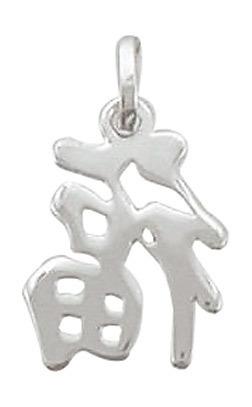"""Chinesisches Zeichen für """"viel Glück"""" in 925 Silber"""